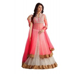 WE0050: Net Lehenga Choli...